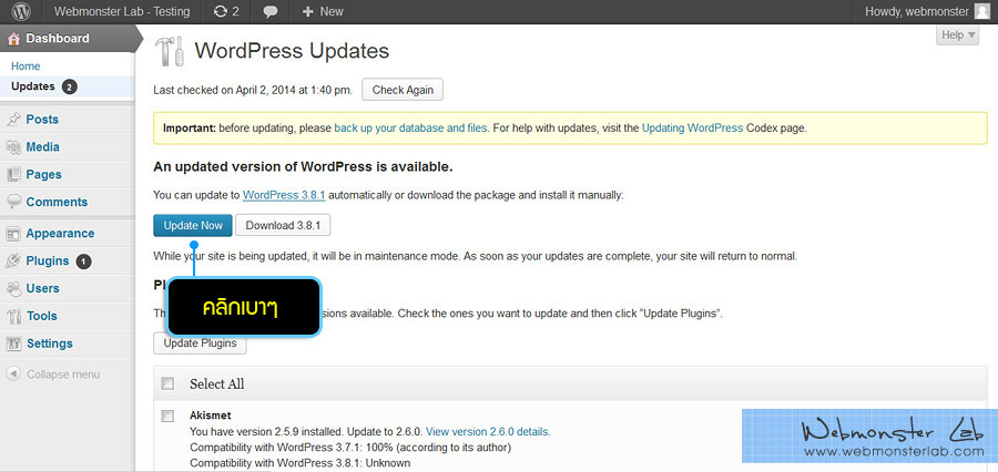 wordpress-update-02